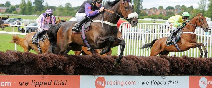 myracing.com Hurdle Tips Banner