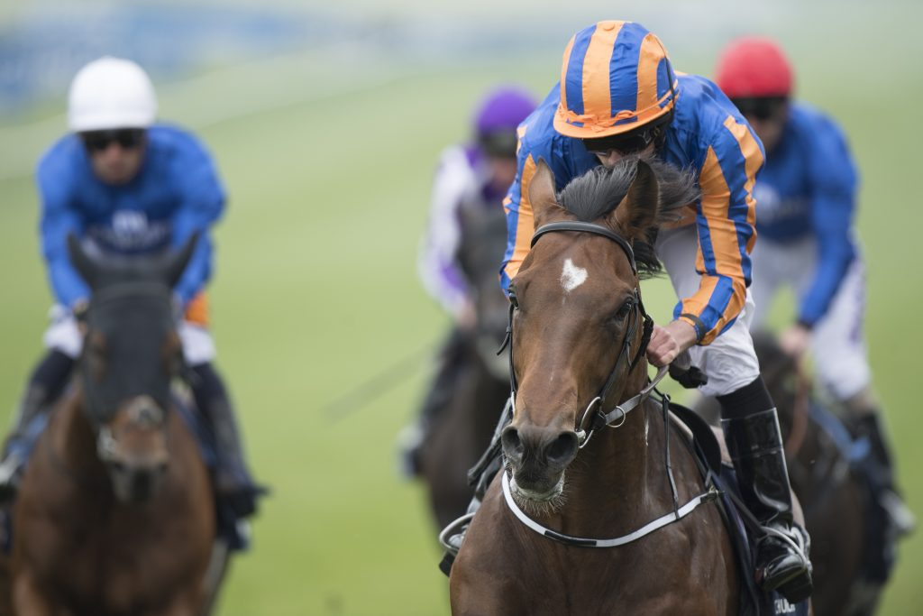 English 2000 guineas betting trends tx6 bitcoins