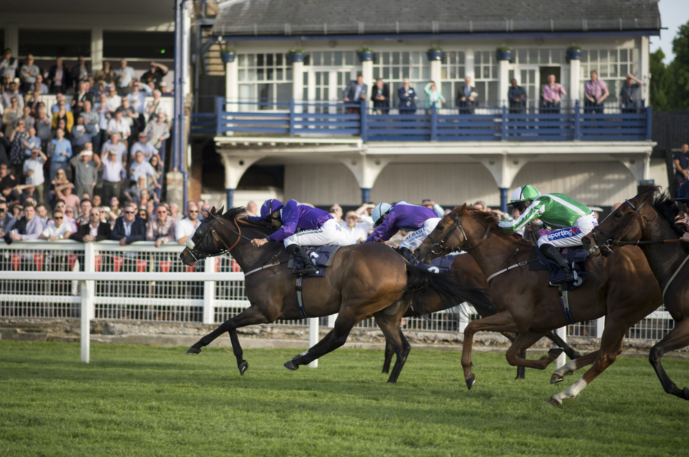 Free Horse Racing Tips, Horse Racing Betting & Sports Betting Tips