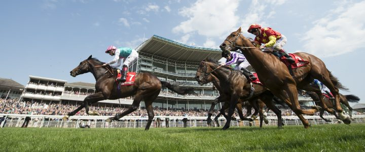 Saturday Horse Racing Trends: 100/1 Stats Double