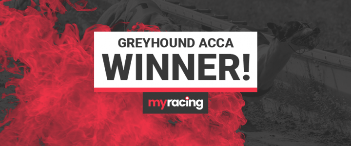 15/2 Greyhound Acca Winner!
