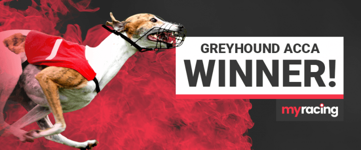 19/1 Greyhound Acca Winner!