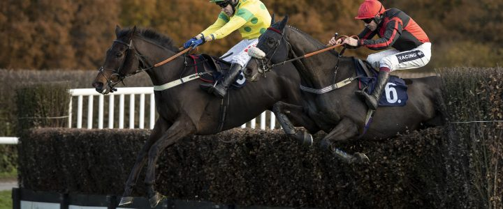 Ladbrokes Trophy Chase Trends