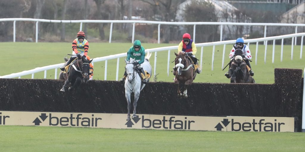 Runners jump a fence in the 2018 Betfair Chase