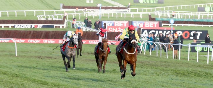 How many places are there in a horse race? | myracing