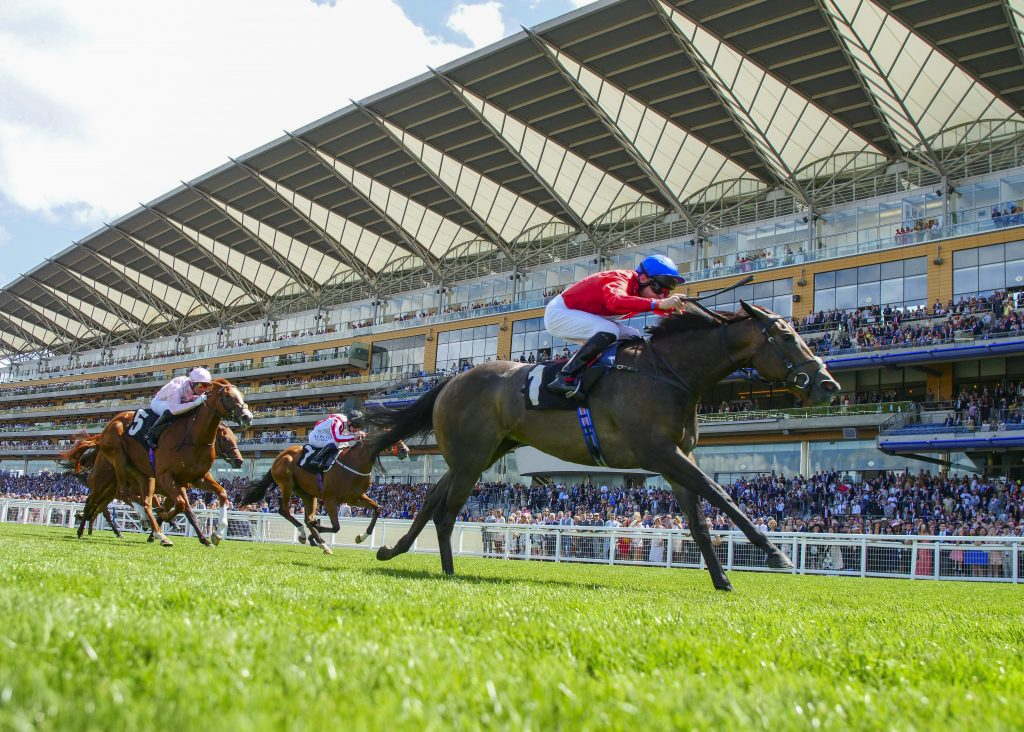 Robert Havlin goes clear of the field at Ascot.