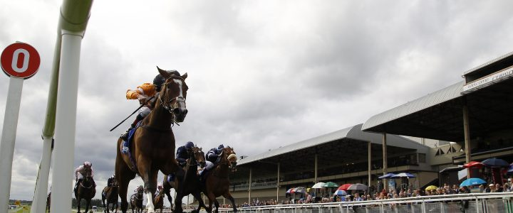 Irish Oaks Outsiders Analysed, Who's Most Likely To Cause An Upset!