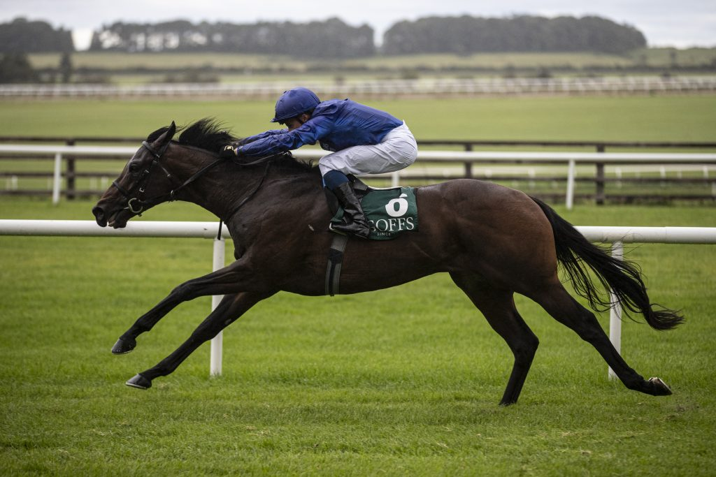 Pinatubo winning the Vincent O'Brien Nation Stakes